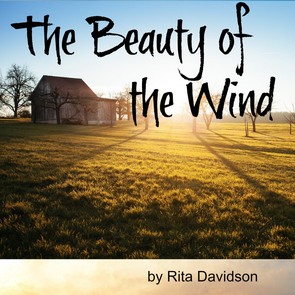 beautyoftheWind 1024x1024 The Beauty of the Wind