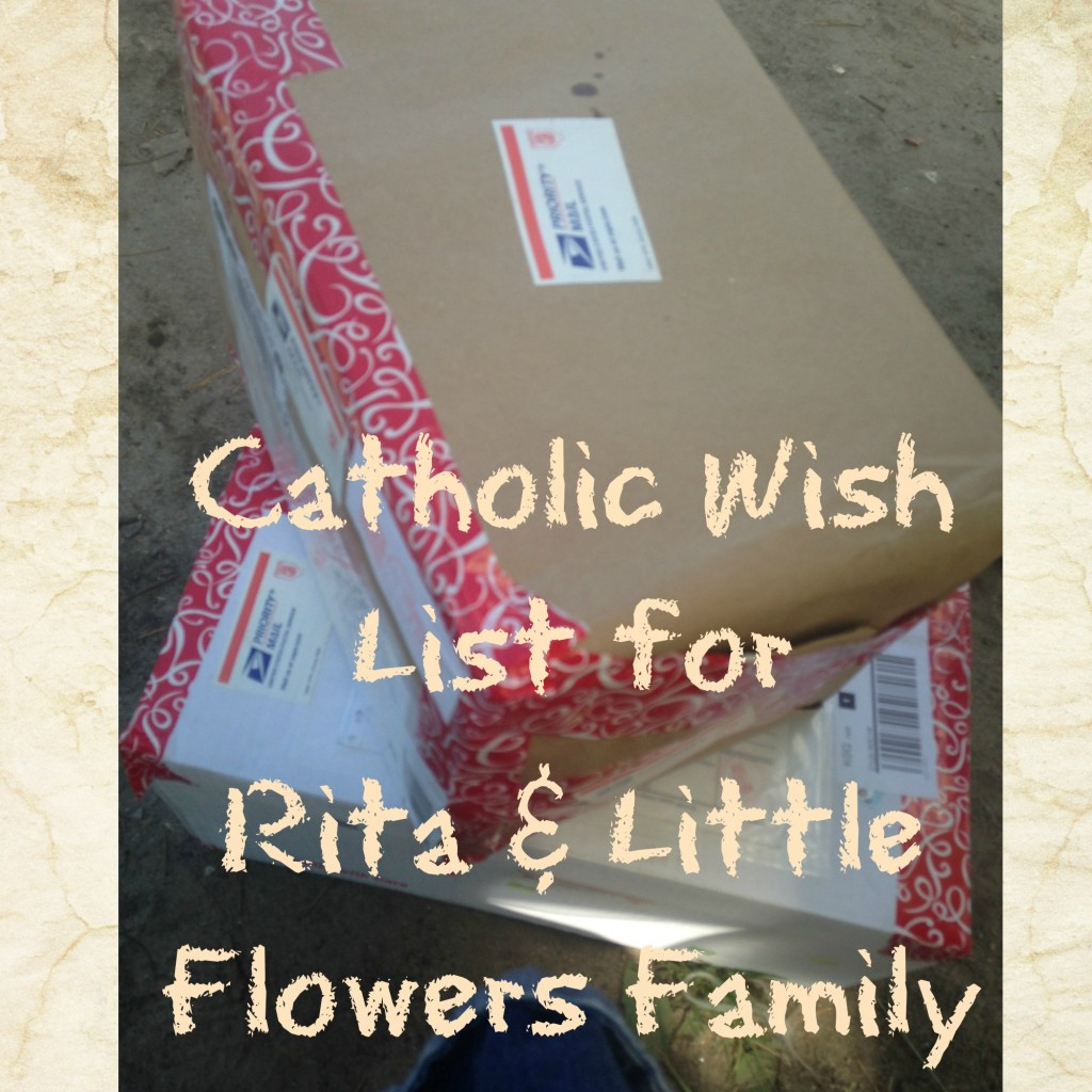 CatholicWIshList 1024x1024 Catholic Wish List for Rita & Little Flowers Family