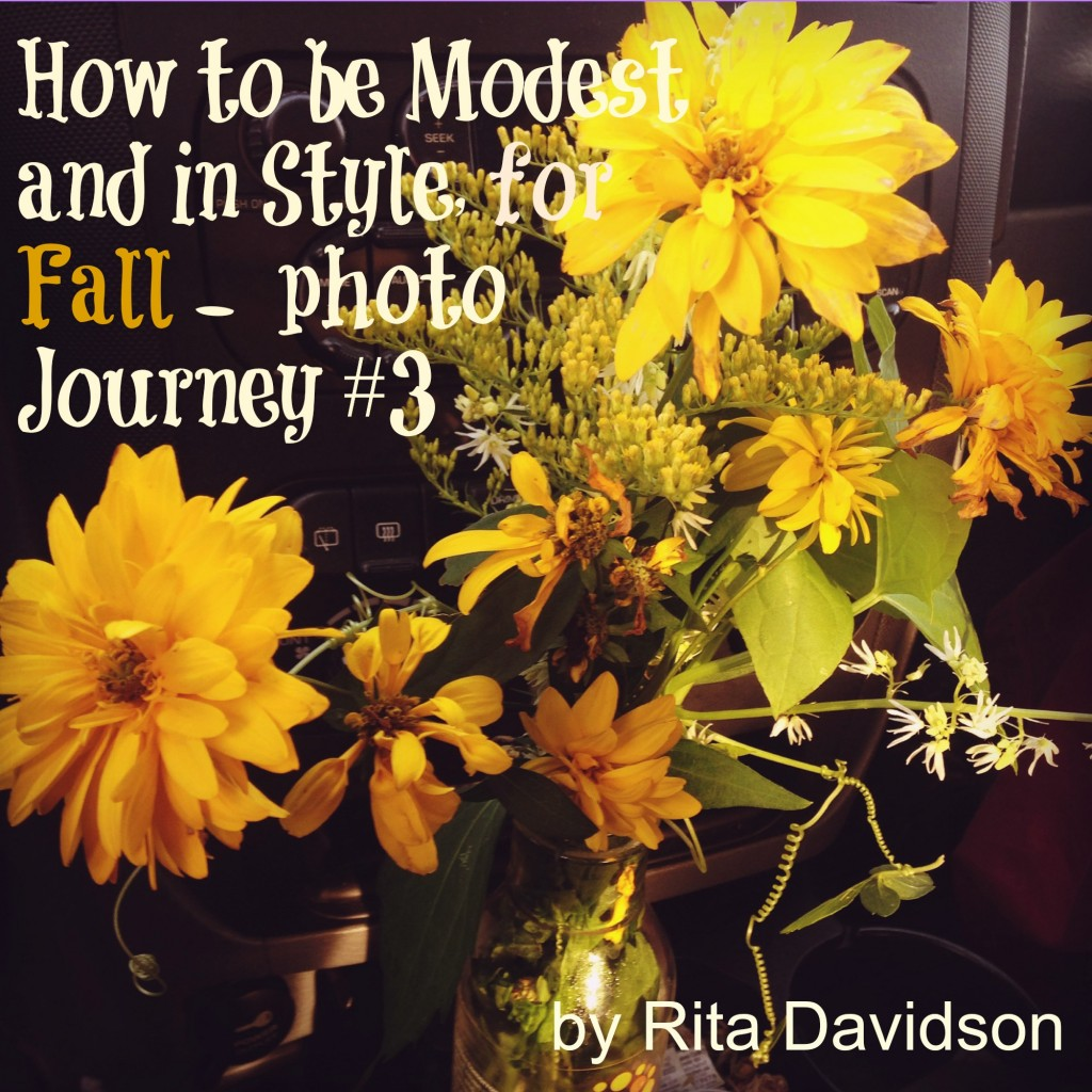 ModestStyle3 1024x1024 How to be Modest and in Style, for Fall    photo Journey #3