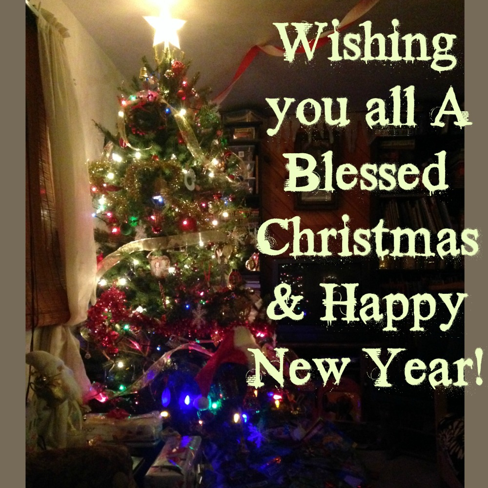 Wishing you all A Blessed Christmas & Happy New Year!